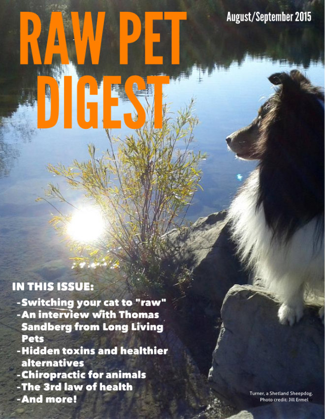 Raw Pet Digest Article
