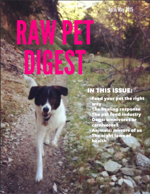 Best magazine for raw feeders