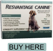 resvantage-canine-5mg-canine-buy-here-1